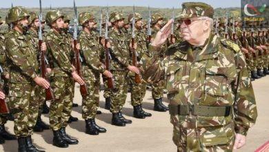 صورة لماذا يقاتل القايد صالح من أجل بقاء بوتفليقة و ماهو موقف الجيش من غضب الشارع الجزائري ؟؟؟
