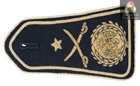 صورة ترقية العقداء التالية اسماءهم من القوات الجوية الى رتبة عميد جينرال …