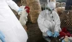 صورة الزراعة الفرنسية رصدت 61 بؤرة لتفشي إنفلونزا الطيور جنوب غرب البلاد