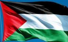 صورة مقتل 43 فلسطينياً كحصيلة القصف على غزة حتى اللحظة